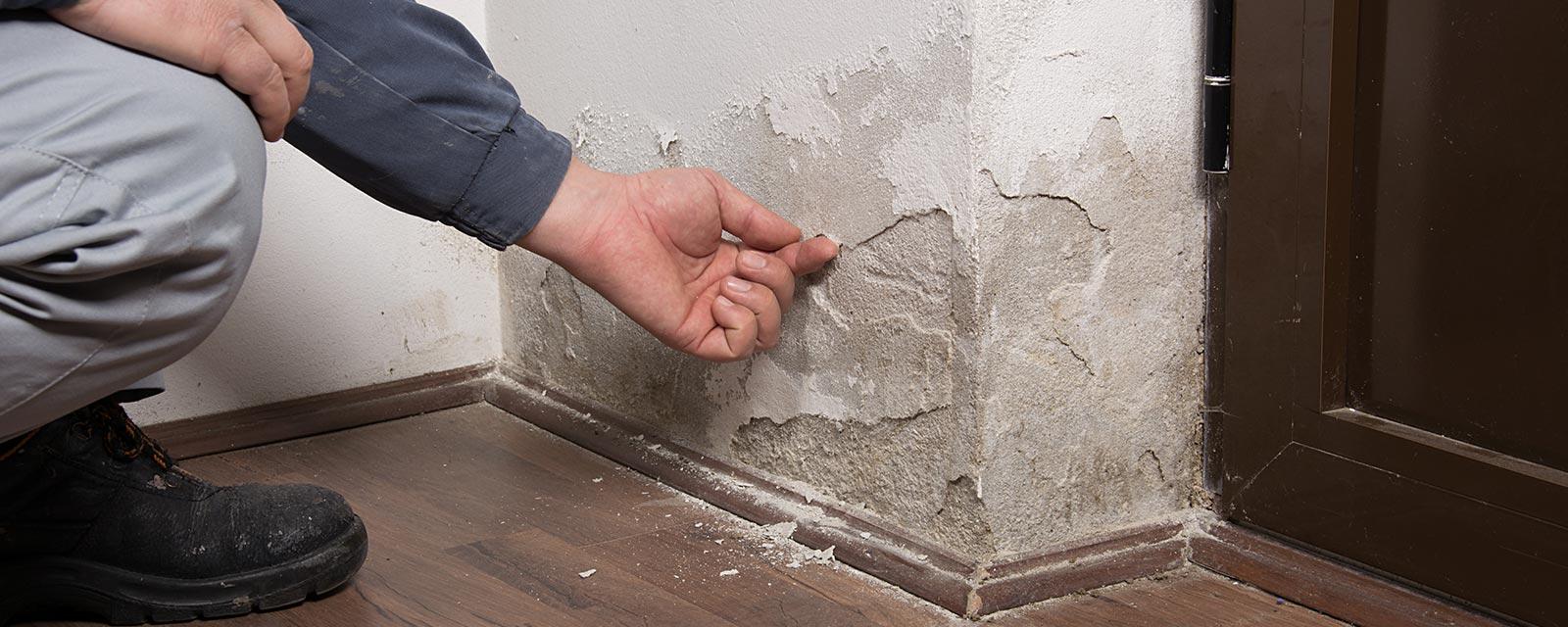 Humidite Qui Remonte Par Le Carrelage comment combattre des murs humides ? | guide artisan